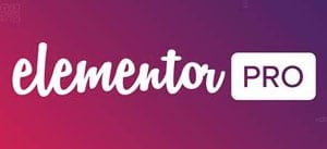 How to start a web design business with elementor